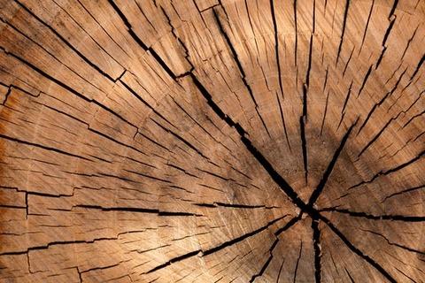 background-brown-circle-cut-40973-medium