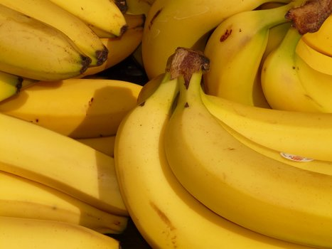 banana-fruit-healthy-yellow-41957-medium
